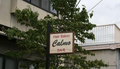 calmo-5.jpg