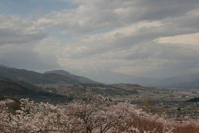 富士川町大法師公園